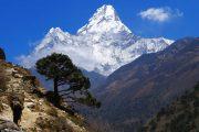 Nepal Ama Dablam