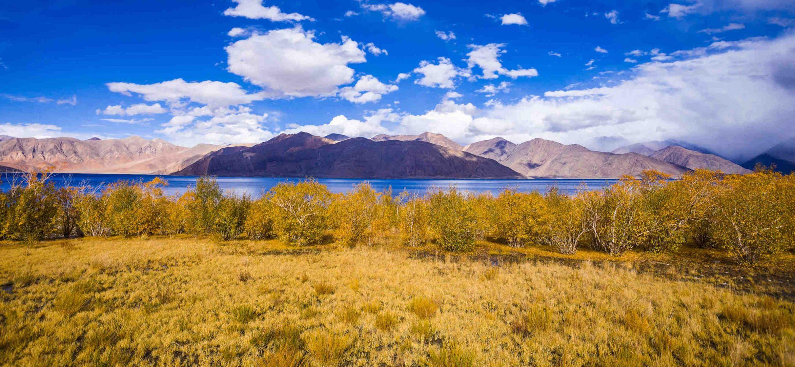 India - Cultureel Ladakh