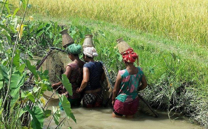 Nepal - Bardia Nationaal Park - vissen lokale community