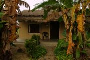 Nepal - Chitwan Nationaal Park - Community lodge