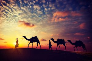 Reizen naar India - travel Nepal